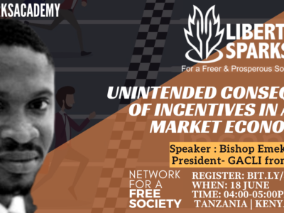 Unintended Consequences of Incentives in Free Market Economy