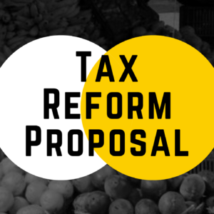 Tanzania Tax Reform Proposal 2021-2022